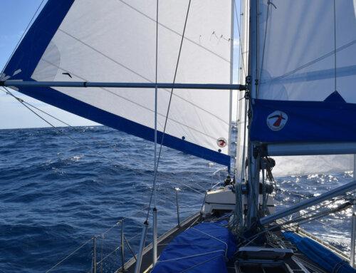 Downwind Passage Sail Set-up